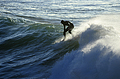 Surfer Crests a Wave at Steamer Lane, Santa Cruz, California