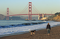 Golden Gate Bridge with beach walker and German Shepard dog