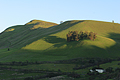 Rolling hills, green with spring, near San Jose, California