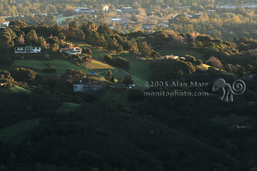 Silicon Valley Residential Area at Dawn