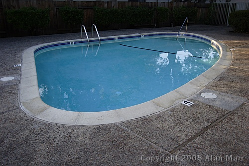 Calm Blue Swimming Pool